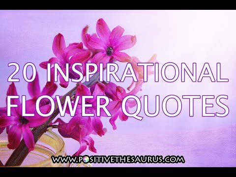 Positive Quotes Series: Inspirational Flower Quotes (slideshow Video With  Beautiful Flower Photos)   YouTube