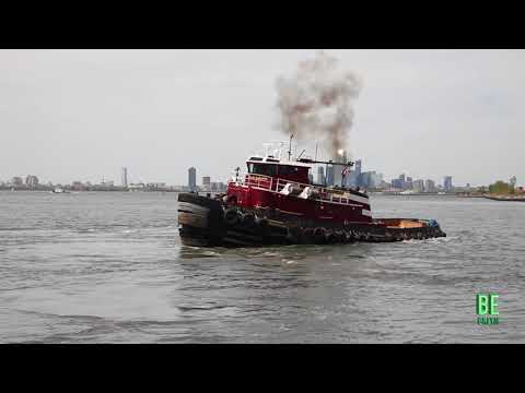 South Brooklyn Marine Terminal is back