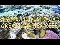 Snorkeling the Great Barrier Reef ? Port Douglas, Australia