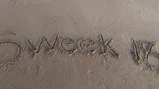 SENIOR WEEK 2018 !!! ( Ocean City MD)