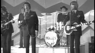 MUSIC OF THE SIXTIES    THE HOLLIES  IN CONCERT