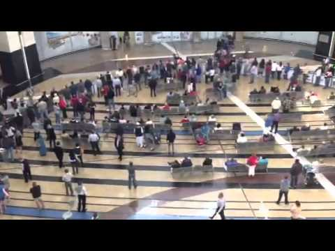 Arrivals at OR Tambo Johannesburg International Airport