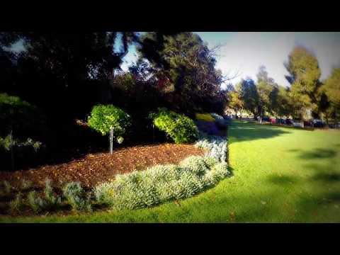 ♪♫ Cat Stevens - Morning Has Broken - Melbourne Royal Botanical Gardens