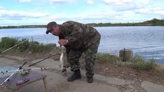 Рыбалка на Москва-реке.  Донки-кормушки-закидушки.