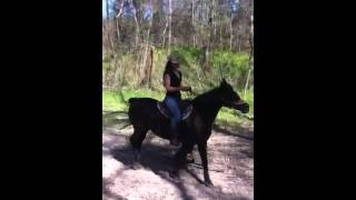 Horseback Riding @ Cypress Trails with Becky Lou