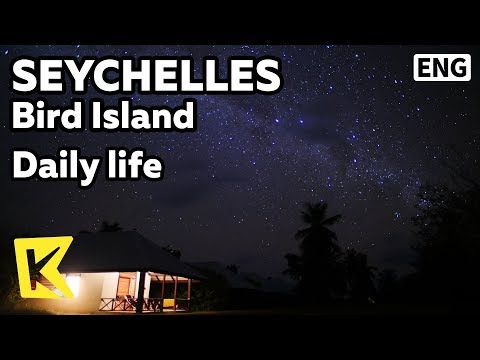 【K】Seychelles Travel-Bird Island[새섬 여행-새섬]특별한 일상/Daily life/Nature/Light