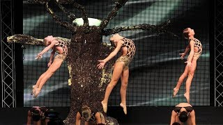 murrieta dance project hanging tree