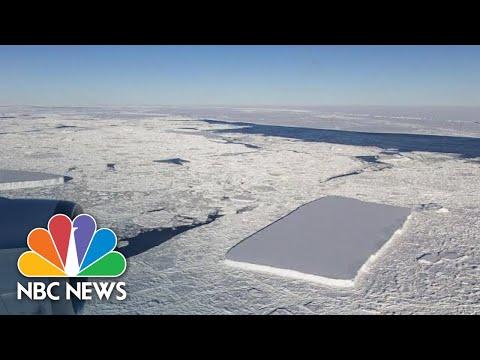 Unusual Rectangular Iceberg Seen Floating Off Antarctic Ice Shelf | NBC News