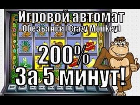 Казино новое вулкан Лыткарин download Казино вулкан на телефон Полевско download