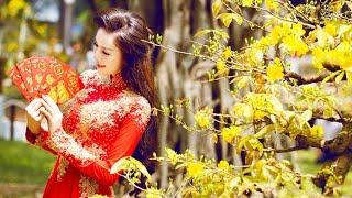 Hội thi mai vàng An Nhơn Bình Định
