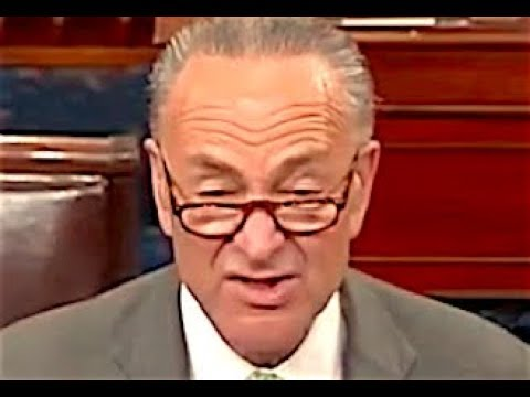 "Chuck Schumer HUMILIATES Trump for the ""STUNNING HYPOCRISY"" of His New Immigration Plan"