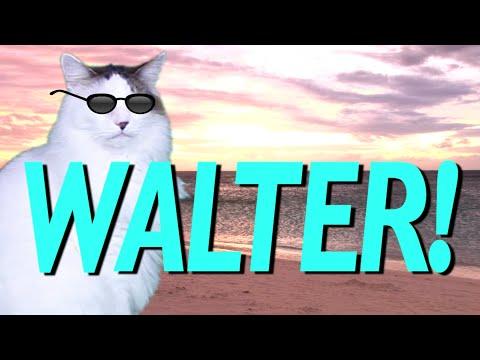 HAPPY BIRTHDAY WALTER! - EPIC CAT Happy Birthday Song