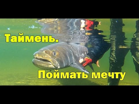 рыбалка тайменя на плато путорана
