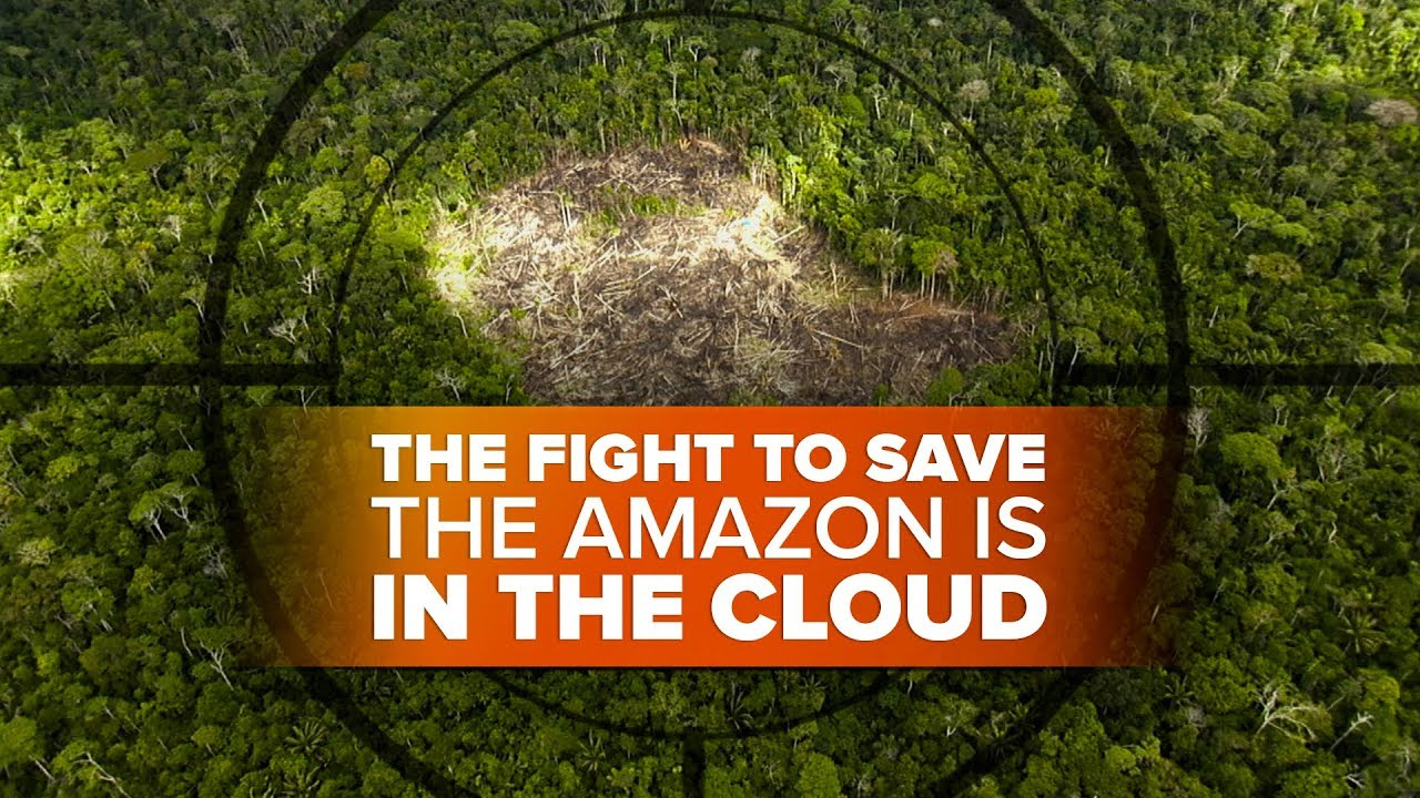 the-fight-to-save-the-amazon-on-the-ground-and-in-the-cloud