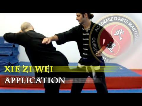14 Shaolin xie zi wei