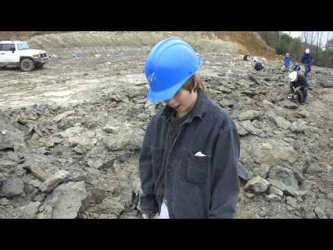 Eocene Fossil Hunting at the  Cement Quarry in Harleyville, South Carolina