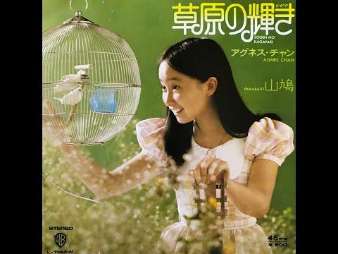 山 鳩 / アグネス・チャン(Agnes Chan/陳美齡)