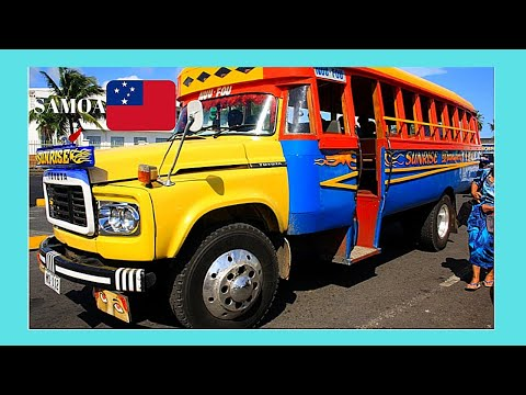 SAMOA, the colorful and beautiful BUSES (PACIFIC OCEAN)