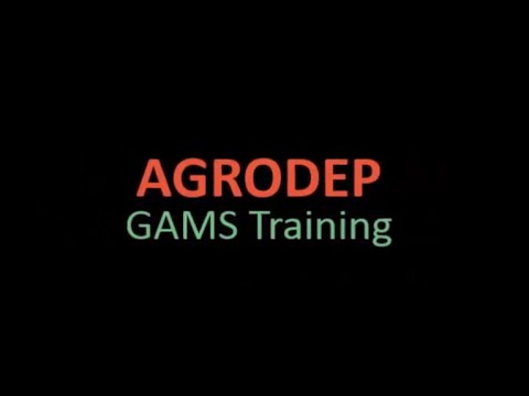 (EN) AGRODEP GAMS Training Lesson 8: Programming a General Equilibrium Model
