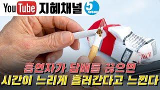 흡연자가 담배를 끊으면…