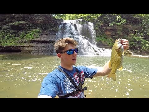 We Found A RARE Fish In The Creeks-- Fishing Giant Waterfalls