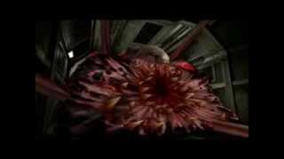 Resident Evil 2 - All Birkin Fight  (No Damage & Pistol Only)