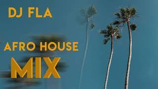 DJ FLA AFRO HOUSE MIX 2019 Mp3