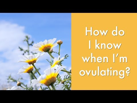 How do I know when I'm ovulating?   Fertility & Natural Birth Control Advice