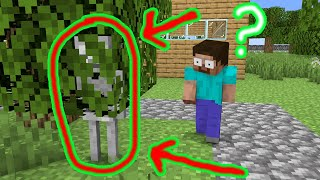 Monster School : Hide and Seek - Funny Minecraft Animation