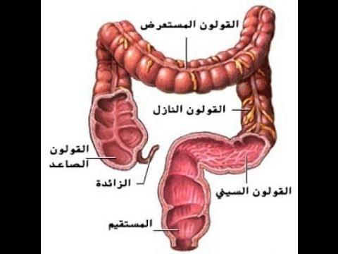 علاج القولون بالاعشاب و وصفات طبيعية لعلاج القولون Colon Therapy