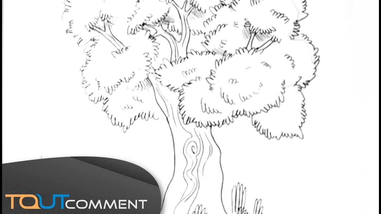 Dessiner un arbre youtube - Dessiner un arbre ...