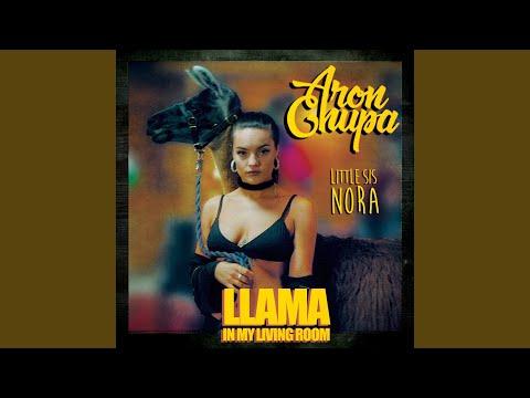 Llama In My Living Room