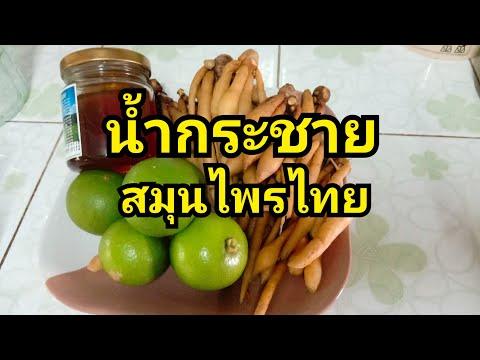 #น้ำกระชายสมุนไพรไทย# ปรับสมดุลฮอร์โมนในร่างกาย#กินเป็นยา ทองปาน ปลูกผัก