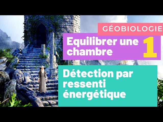 MAGIE DE LA TERRE 1 : détection par ressenti, guide harmonisateur