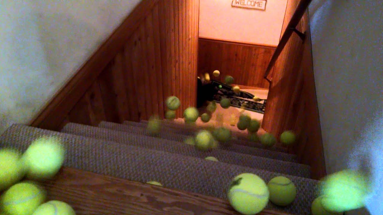 100 Tennis Balls A Border Collie In Heaven Youtube