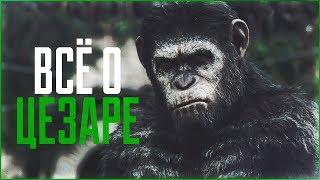 Всё о Цезаре | Планета обезьян