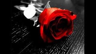 Vina Panduwinata - Mawar Merah (lyric)