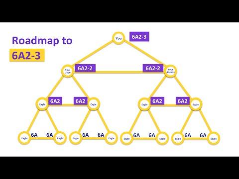 Golden Triangle - A Glimpse into the Enagic Comp Plan