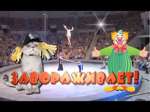 9 АКРОБАТЫ,КЛОУНЫ,носухи,кошки.Шоу артистов цирка Юрия Никулина. Acrobats. Cats.杂技演员   Circus