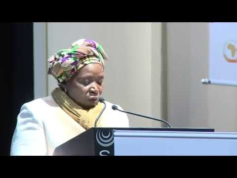 Opening of The 27th Ordinary session of the executive council of the African Union