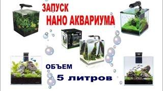 Нано аквариум объем менее 5 литров.