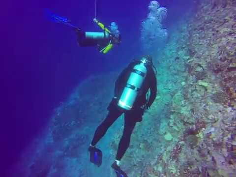 molokini-crater-outer-wall-dive---dec-2017