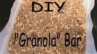 "How To: ""granola"" Bar! *gf And Low Calorie*"