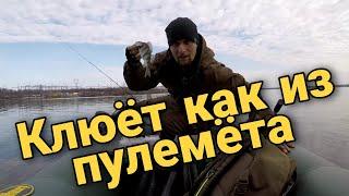 Рыбалка на окуня микро джигом с лодки Окунь клевал как из пулемёта РОЗЫГРЫШЬ 18 02 2021