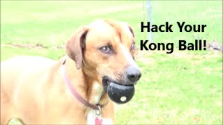 How To Hack Your Dog's Kong Ball For The Most Extreme Chewers