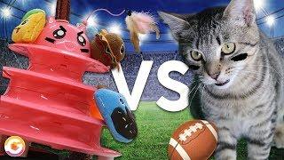 Cats vs Robots | Robot Kitten Bowl Special! | GoldieBlox