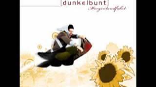[dunkelbunt remix] - !deladap feat. 17 Hippies - Lautlos