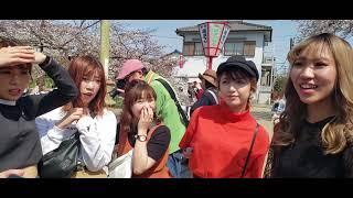 Sakura Ada Berapa Warna Ya??? (Yang Baju Merah Jangan Sampai Lepas Wkwkw)