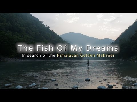 The Fish Of My Dreams - In Search Of The Himalayan Golden Mahseer - Full Film