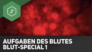 Aufgaben des Blutes - Blut-Special 1 ● Gehe auf SIMPLECLUB.DE/GO & werde #EinserSchüler